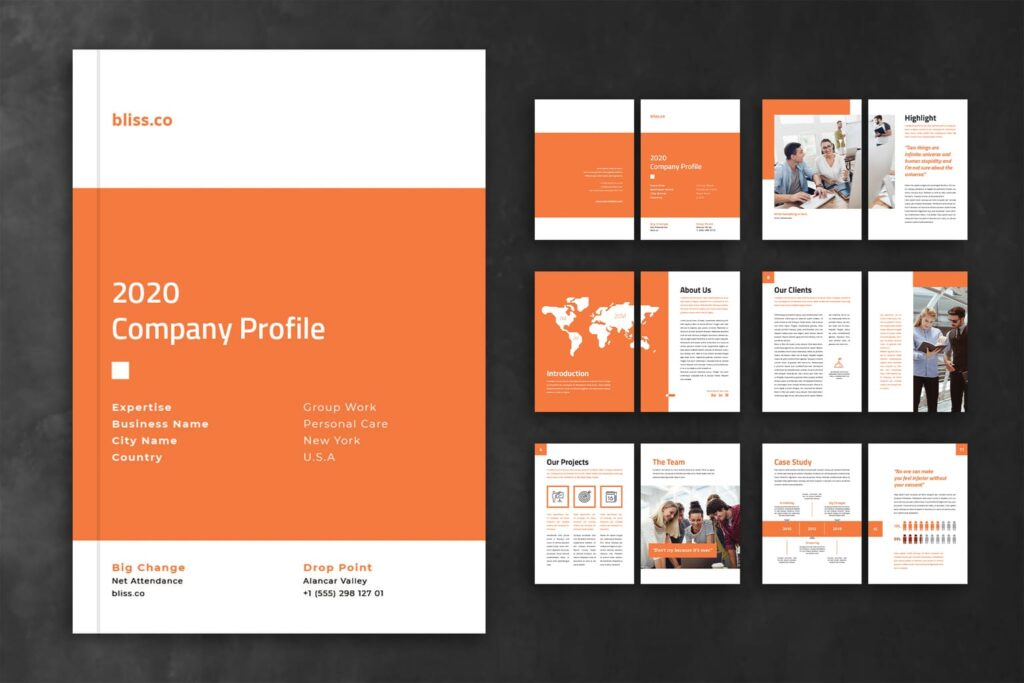 Company Profile – Finance Product Services