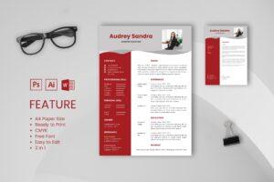 CV Resume – Content Creator Profile 2