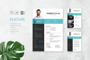 CV Resume - Art Director Profile
