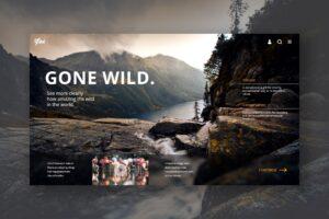 Hero Header - Natural Forest Conservation