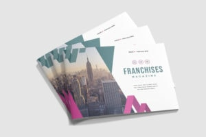 Lanscape Magazine - Franchise Business