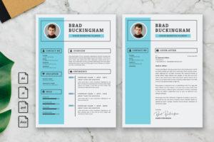 CV Resume - Senior Marketing Planner Profile
