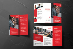 Trifold Brochure - Professional Business