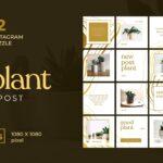 instagram puzzle – good plant