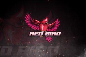 esport logo red bird