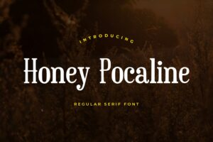 fonts honey pocaline serif