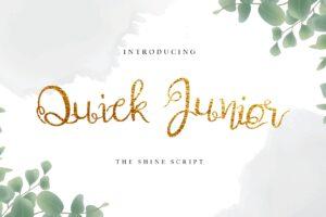 fonts the wedding script