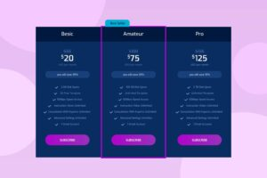 pricing table professional web hosting servers